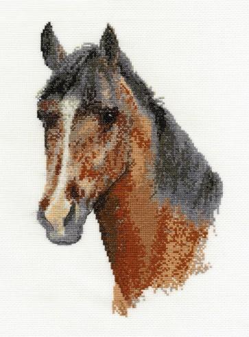 DMC Cross Stitch Kit - Horses - Horse Portrait