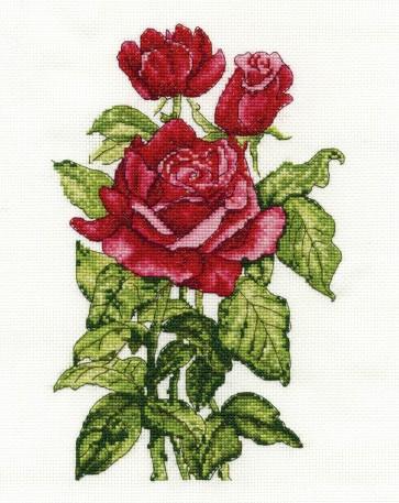DMC Cross Stitch Kit - Flowers - Roses
