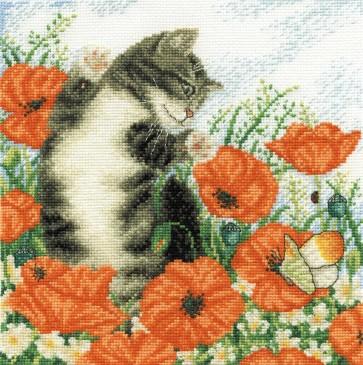 Poppy Cat - Cats - BK130