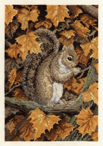 Autumn Leaves - Wildlife - BK1466