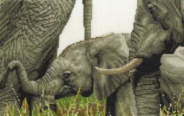 DMC Cross Stitch Kit - Safari Animals - Always By My Side