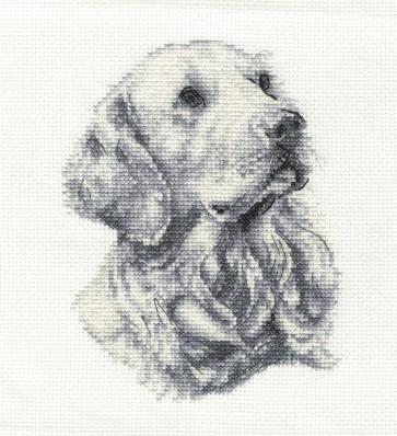 DMC Cross Stitch Kit - Dogs - Golden Retriever