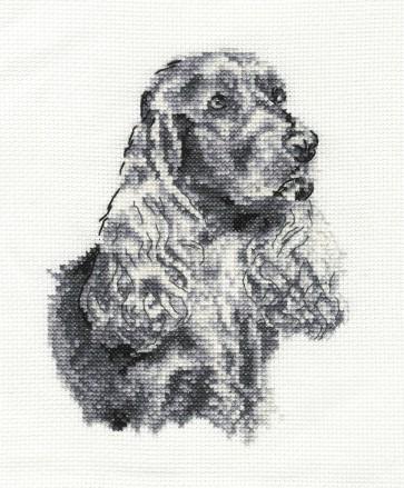 DMC Cross Stitch Kit - Dogs - Cocker Spaniel