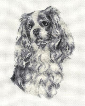 DMC Cross Stitch Kit - Dogs - King Charles Cavalier