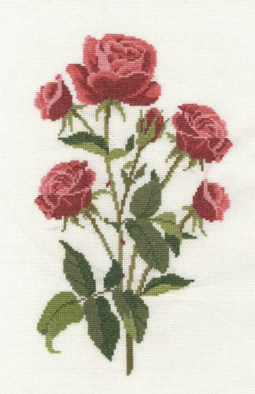 DMC Counted Cross Stitch Kit - Roses