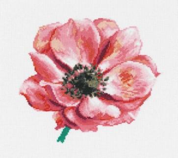 Anemone - Florals - BK607