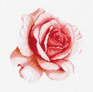 DMC Cross Stitch Kit - Florals - Rose