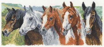 DMC Cross Stitch Kit - Caroline Cook - Crazy Horses
