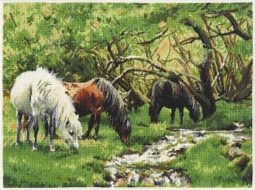 DMC Cross Stitch Kit - Caroline Cook - Horses And Stream