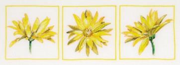 DMC Cross Stitch Kit - Florals - Daisy Trio Close-up