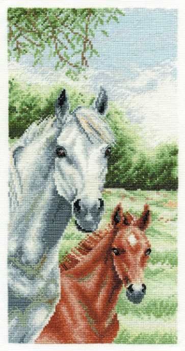 DMC Cross Stitch Kit - Caroline Cook - New Day