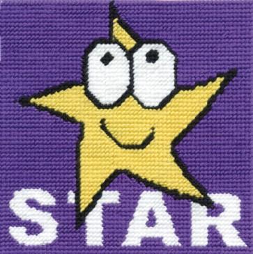 DMC Tapestry Kit - Star - CK044