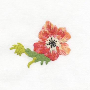 DMC Beginners Embroidery Kit - Anemone - TB033F