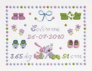 DMC Cross Stitch Kit - Sampler - Booties First Name Sampler