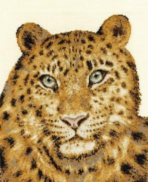 Amur Leopard Twilight - Endangered Species - BK1188