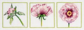 DMC Cross Stitch Kit - Florals - Peony Trio Close-up